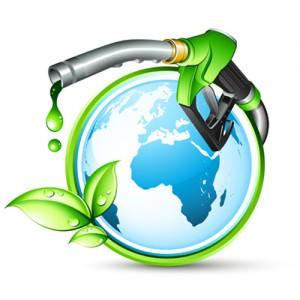 biocarburant algues