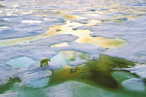 fonte-glace